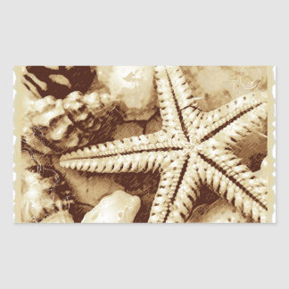 Starfish and Seashells Stickers