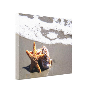 Starfish And Shell Canvas Print