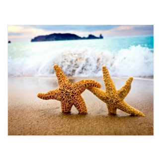 starfish couple postcard
