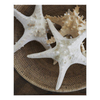 Starfish in a basket poster