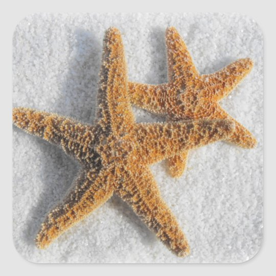 Starfish in Sand Beach Wedding Square Sticker