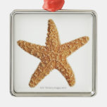 Starfish isolated on white metal ornament
