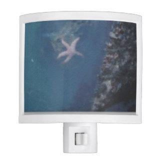 Starfish Nite Lites