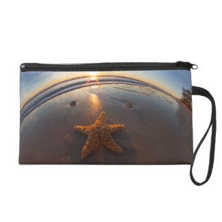 Starfish on Beach Wristlet