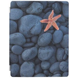 Starfish On Black Rocks Along The Coast | Iceland iPad Cover