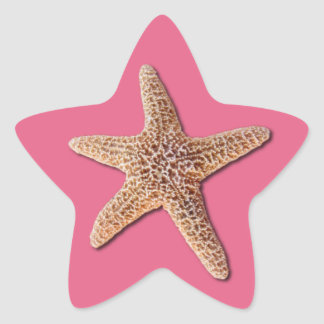 Starfish on pantone Honeysuckle 2011 Star Sticker