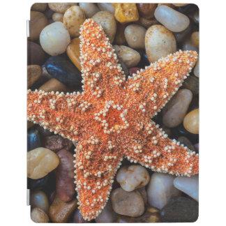 Starfish On Rocks iPad Cover