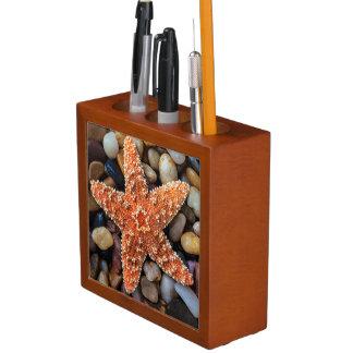 Starfish On Rocks Pencil/Pen Holder
