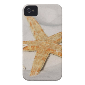 STARFISH ON THE BEACH iPhone 4 CASE