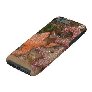 Starfish/Sea Stars in Cannon Beach, OR, Photo 4 Tough iPhone 6 Case