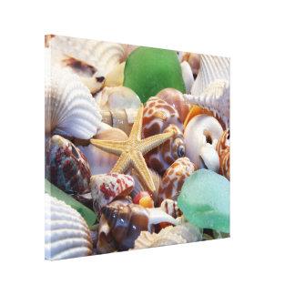 Starfish & Seashells Canvas Wrap