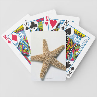 Starfish shell on white background poker deck