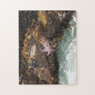 Starfish Tidepool Jigsaw Puzzle