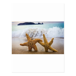 Starfish Together Forever Postcard