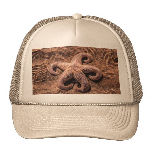 Starfish with Curly Legs Hat/Cap