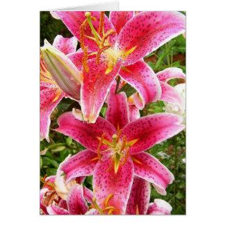 Stargazer Bouquet Card