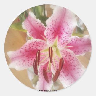stargazer lilies #1 classic round sticker
