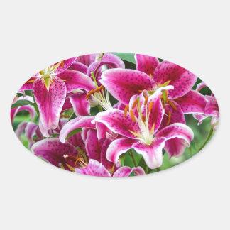 Stargazer Lilies Oval Sticker