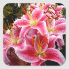 """Stargazer"" Lilies Square Sticker"