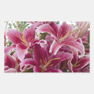 Stargazer Lilies Sticker