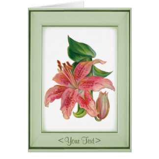 Stargazer Lily - Customize Card