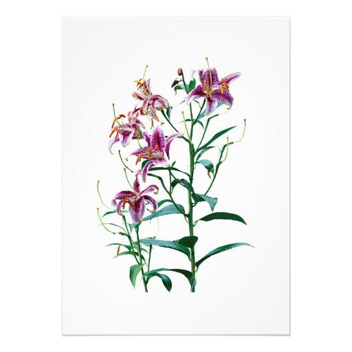 Stargazer Lily Plants Personalized Invite