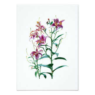 Stargazer Lily Plants Personalized Invite