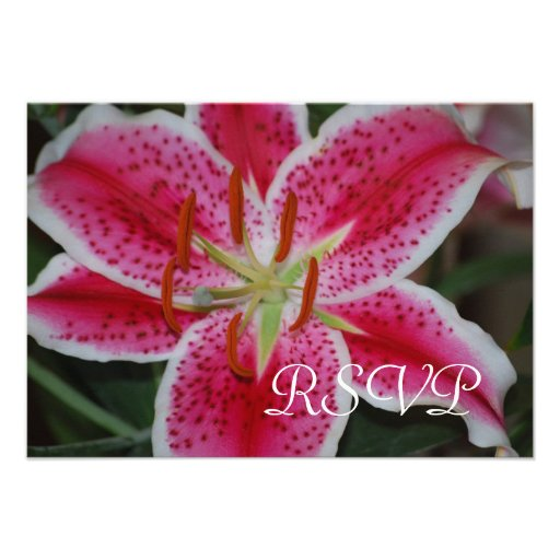 Stargazer Lily RSVP cards Personalized Invitation