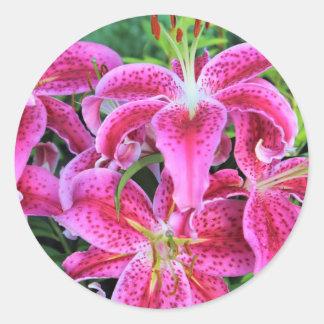 Stargazer Oriental Lilies Classic Round Sticker