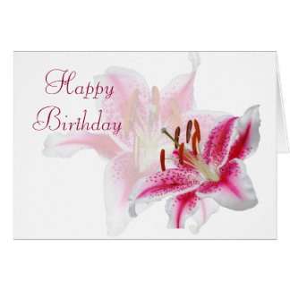 Stargazer Silhouette Birthday Card