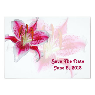 Stargazer Silhouette Save The Date Card