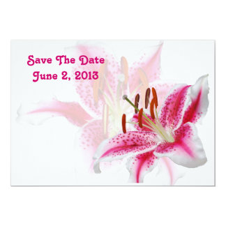 "Stargazer Silhouette Save The Date Card 5"" X 7"" Invitation Card"