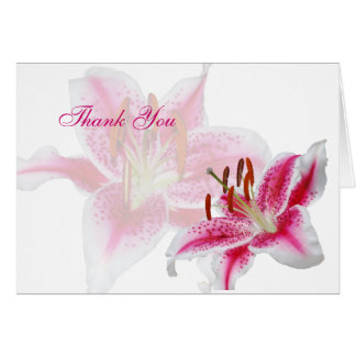 Stargazer Silhouette Thank You Note Card