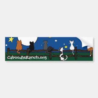 'Stargazing' Bumper Sticker