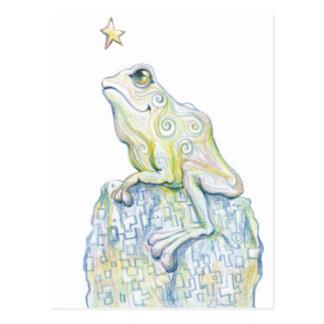 Stargazing Frog Postcard