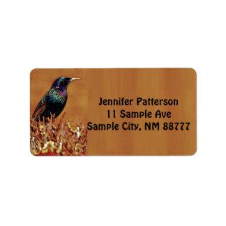 Starling Bird Return Address Labels