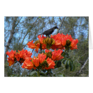 Starling Perched On Flowers Card