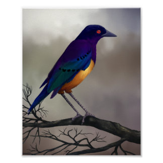 Starling - Wildlife Art Poster 8x10