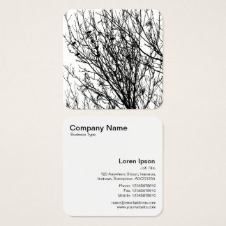 Starlings in a Tree - Black on White Square Business Card