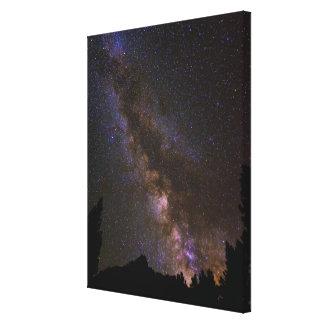 Starry Milky way, California Canvas Print