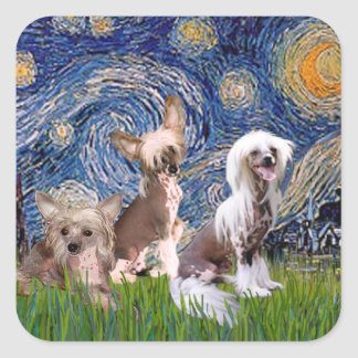 Starry Night - Three HL Chinese Cresteds Square Sticker