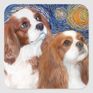 Starry Night - Two Blenheim Cavaliers Square Sticker