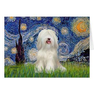 Starry Night - White Tibetan Terrier Card