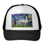 Starry Night with Two Llamas Trucker Hat