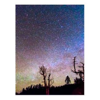 Starry Universe Postcard