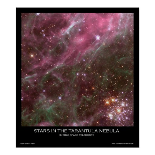 Stars in the Tarantula Nebula - Posters From Space