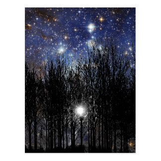 Starscape & Trees - Postcard