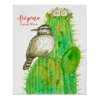 State Bird of Arizona Cactus Wren Poster