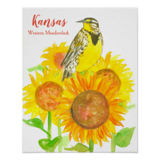 State Bird of Kansas Meadowlark Sunflower Poster