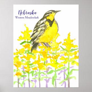 State Bird of Nebraska Western Meadowlark Poster